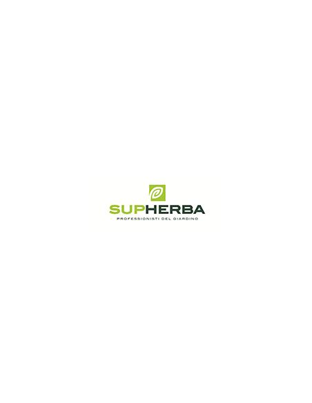 Supherba
